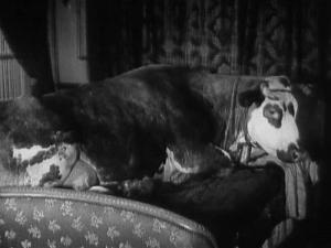 L'âge d'or (Luis Bunuel, 1929)